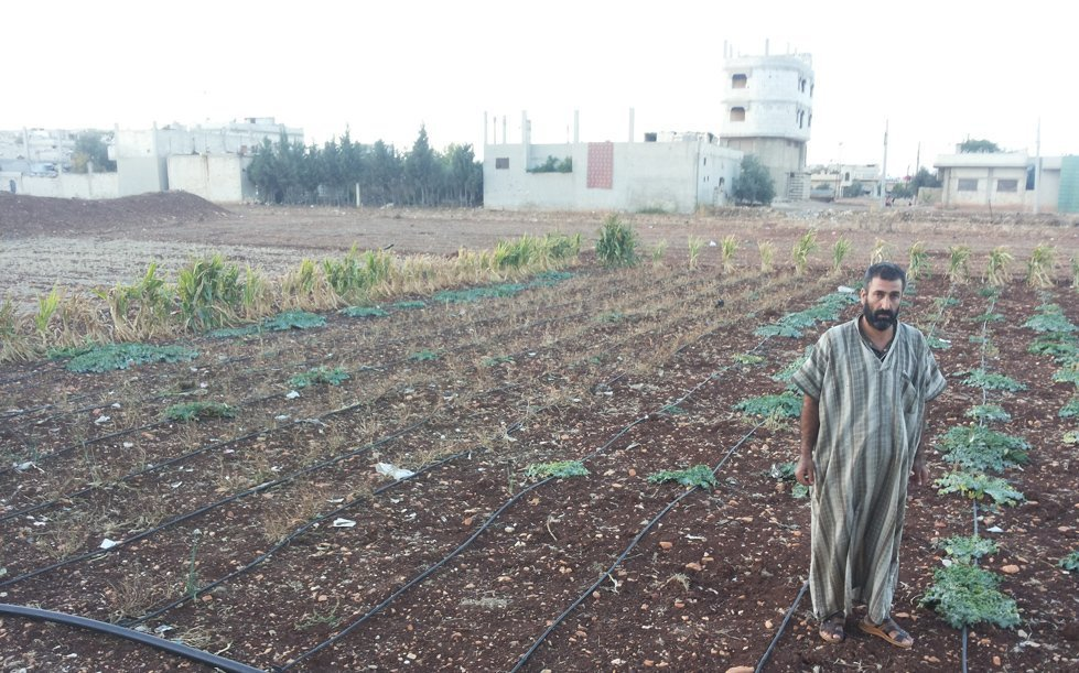 CARE's partner Emissa initiated a farming project in spring 2017, providing some of the most vulnerable families in the besieged area of Northern Homs with agricultural inputs such as seeds and tools