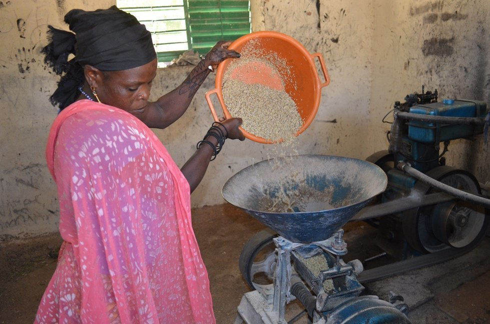 Grinding the millet to make bassi