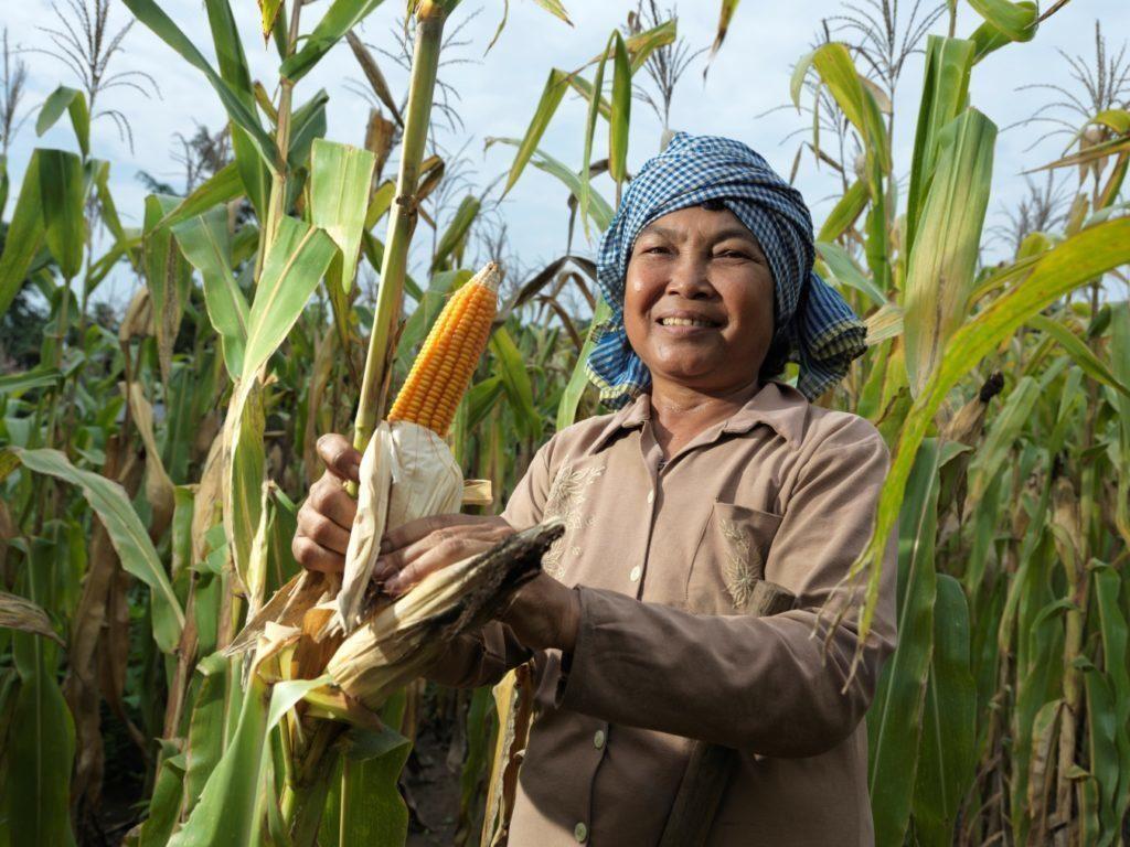 Mrs Vor Thoun with her crops in Battambang, Cambodia