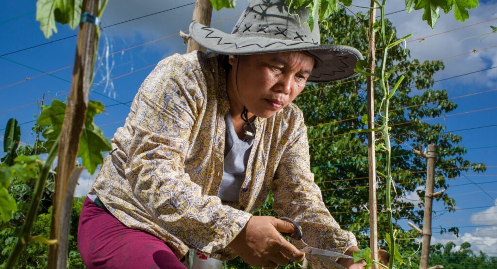 Rosemarie Arante, 48, is a farmer who's house and crops were destroyed when her community was decimated by Typhon Yolanda. She lost everything and has since rebuilt with the help of CARE and the aGAP project. Today she is a story off success, as a small business owner selling seeds, a diversified farm for more stable income and systems that allow better access to market.