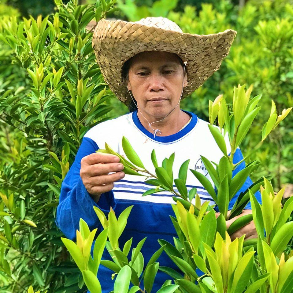 Amalia Batallones is a farmer in San Dionisio, Iloilo in the Philippines. Photo: CARE
