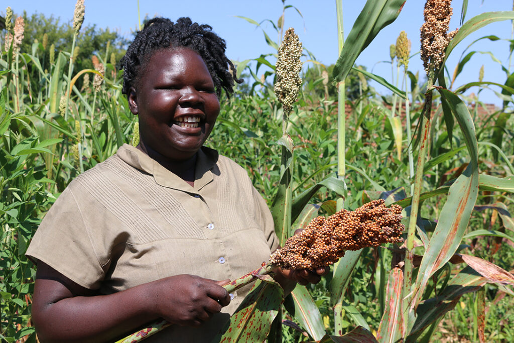 CARE helping farmers to fight hunger through kitchen gardens. Agnes harvesting her produce in South Sudan.