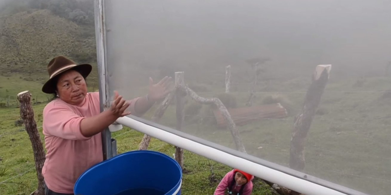 Turning fog into water in Ecuador