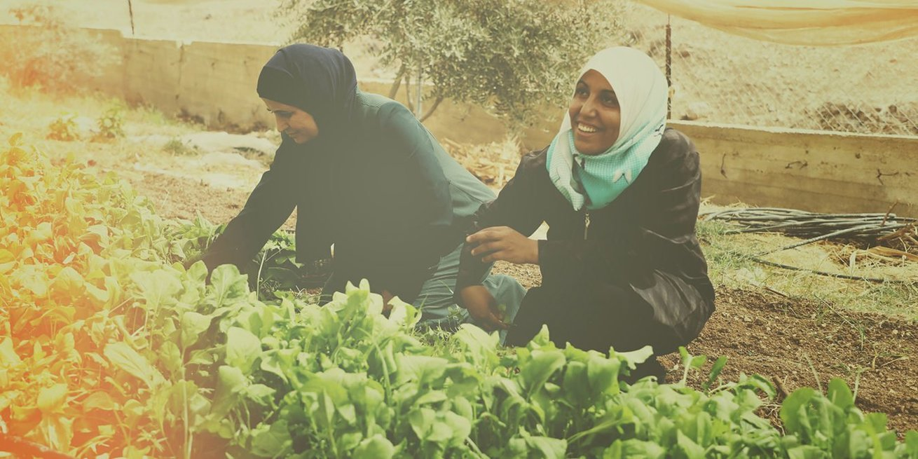 <p>  Raida and Iman are founding members of a cooperative of female organic farmers in a remote community in&nbsp;Nassareyeh in the Jordan Valley in the West Bank.&nbsp;</p> <p>  What started as a small project grew and the group learned all they could about farming, even asking other male farmers in their communities for advice. They were so successful, that their farm became a model for others.</p> <p>  In the beginning, we sent boxes of tomatoes to communities. But then we thought to invite women here so they could choose their produce themselves. This got them out of their homes and they were getting a customized product. This created a great local market for us and we focused on growing it.&rdquo;</p> <p>  There was an announcement in the community that CARE was seeking groups to apply for a project and do some training. The group was wary because they had done this many times with other organizations and it didn&rsquo;t work out as they had hoped. This time was different though.</p> <p>  &ldquo;CARE gave us the chance to put everything we learned into practice,&rdquo; says Iman. &ldquo;They didn&rsquo;t give us a business plan that they made for us to implement. We were to develop it ourselves with their guidance. We walked through the process by ourselves. They encour