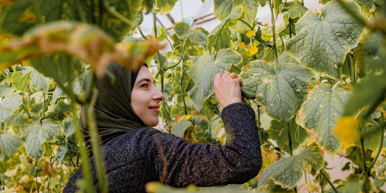 Arwa Abu Hnaish in Palestine