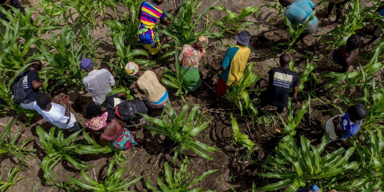 CARE distributed drought-resistant seeds and providing basic training in improved agricultural practices to help communities combat the effects of climate change going forward